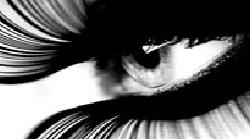imagConcursoFotografia
