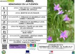 Cartel ABRIL 2013