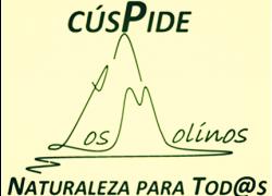 LogoCuspide