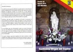 VirgenEspino2015web