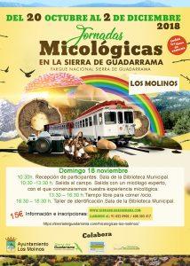 Jornadas Micológicas en la Sierra de Guadarrama @ Biblioteca Municipal