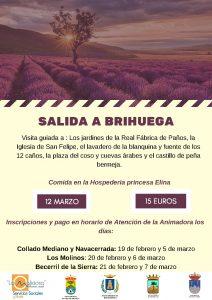 Salida a Brihuega (para mayores) @ Brihuega