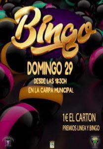 GRAN BINGO @ Carpa municipal
