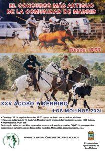 XXV Acoso de Derribo Los Molinos @ Los Llanos de Los Molinos